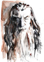 Gandalf by AnnAshley