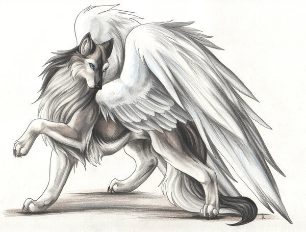 Anime Wolves with Wings