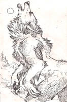 Werewolf 2 by Anarchpeace
