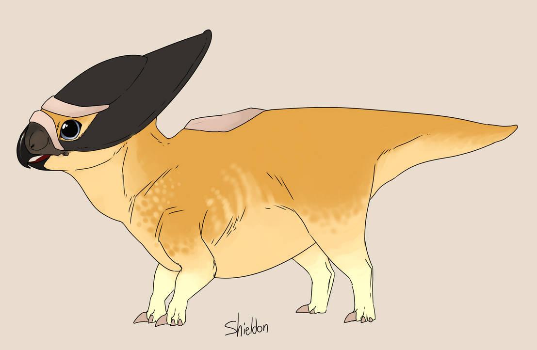 Shieldon by umbbe