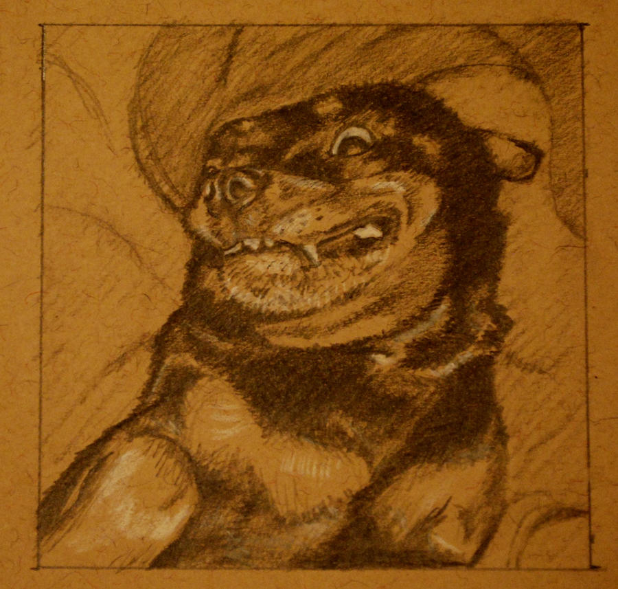 3x3 goggie sketch by Skulligan