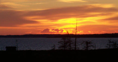 Firey Sunset by Zionic-Bunny
