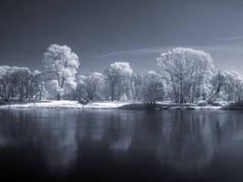 Infrared Landscape Part III by knechtrootrecht
