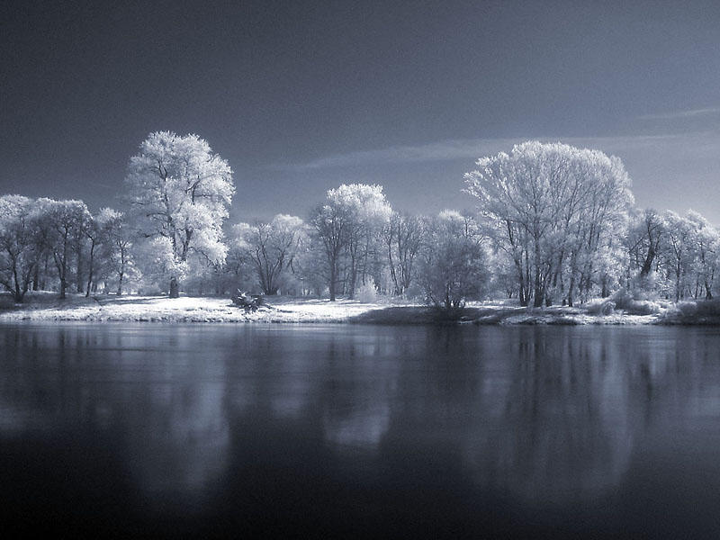 Infrared Landscape Part III by knechtrootrecht