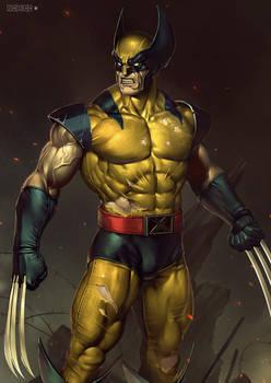 Wolverine Rcb 2