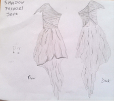 Shadow Princes Jane, Dress