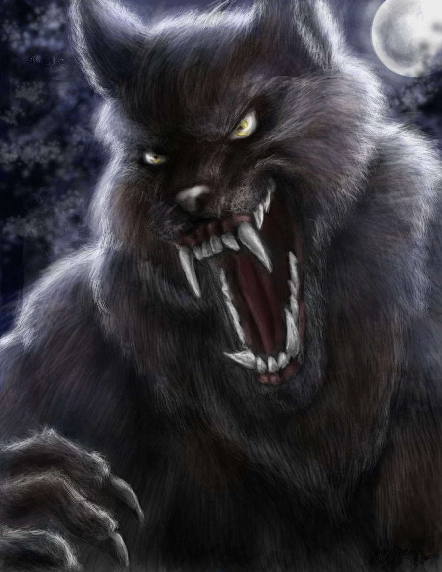 The Werewolf by HalloweenBloodyQueen