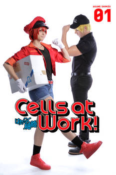 Erythrocyte, Red Blood Cell -  Cells at work! I