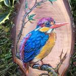 Ruby Kingfisher fragment