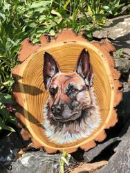 Shepherd dog II