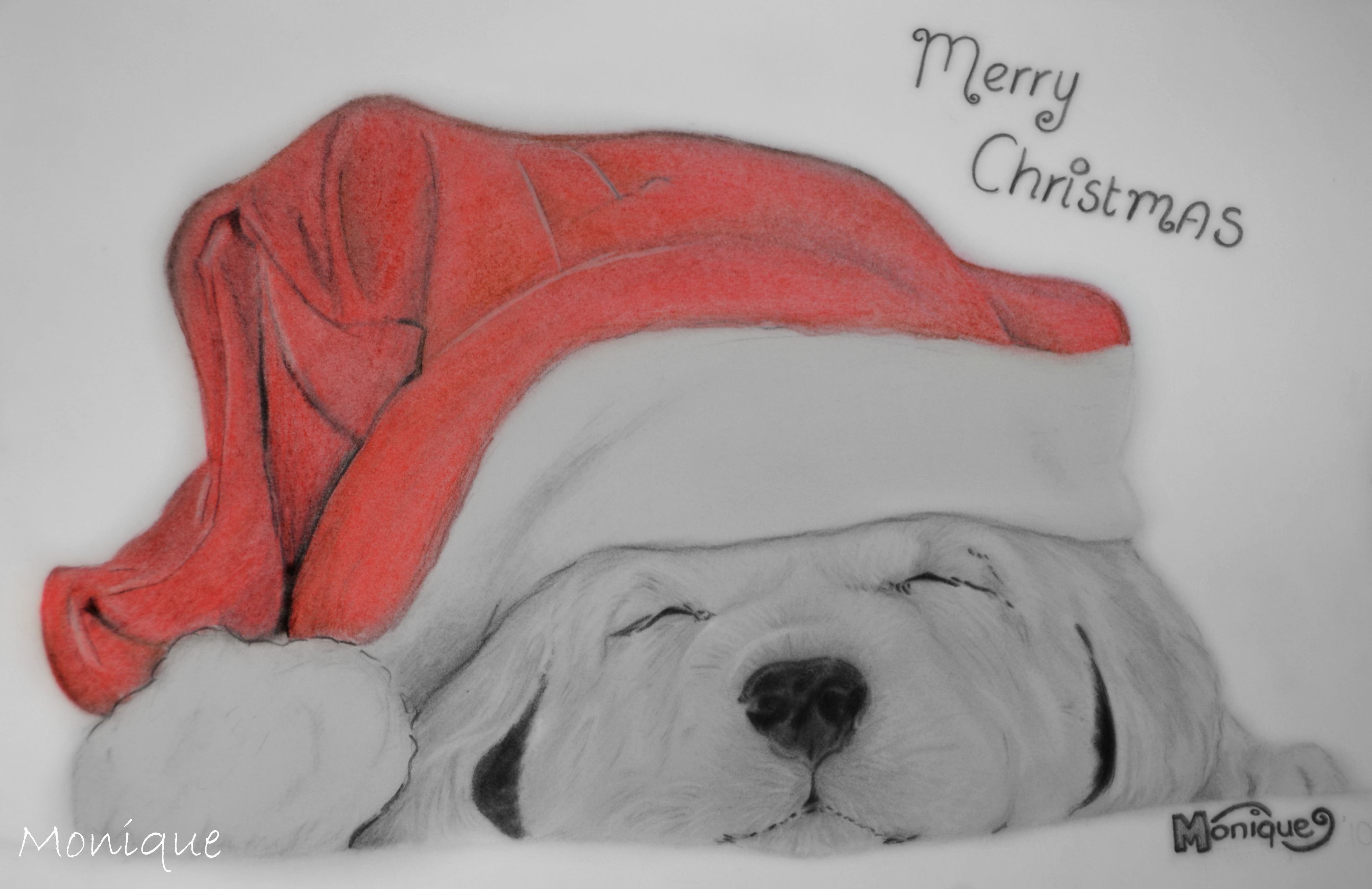 drawing christmas puppy by monique art on deviantart