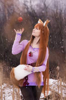Holo by ClaireSea