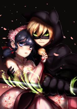 Chat Noir/Marinette