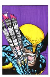 Hulk Wolverine B Colors