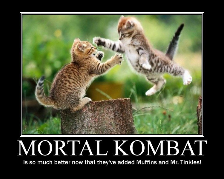 Mortal Kombat by AwXomeMan