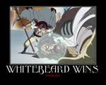 Whitebeard Wins