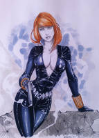 Black Widow by grover80