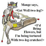 Mange Get Well