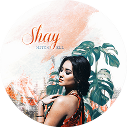 Blend Shay Mitchell