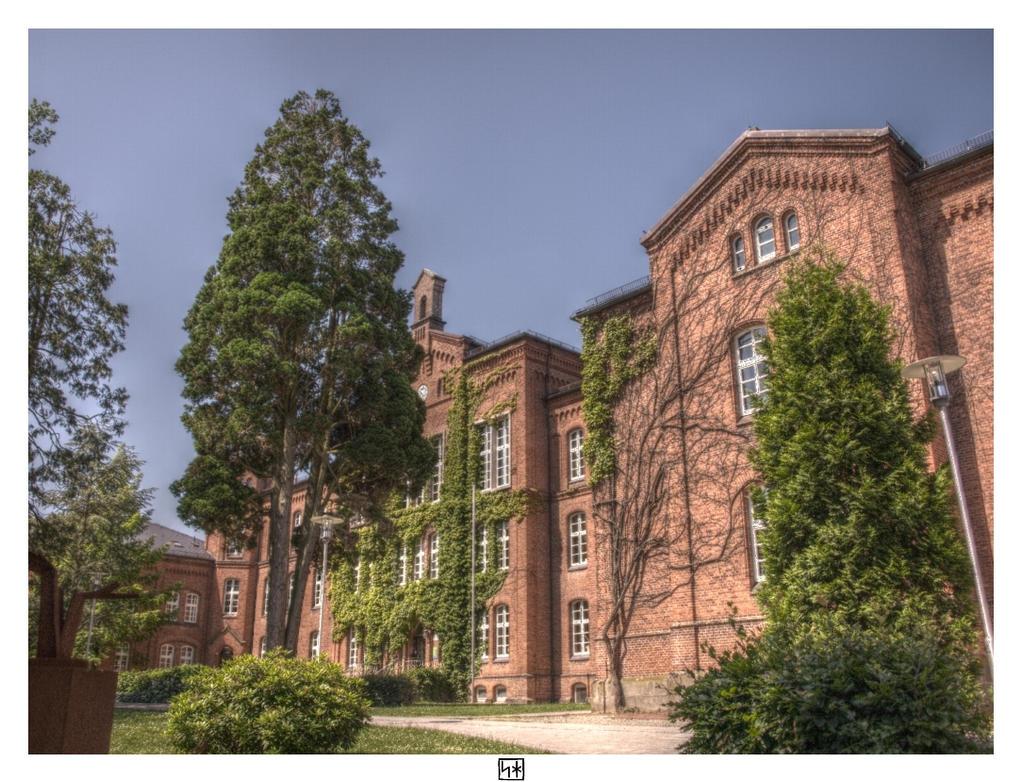 School I by PsykoHilly