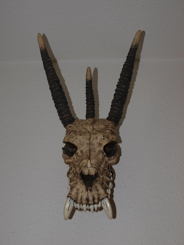 Skull Stock 11 by PsykoHilly