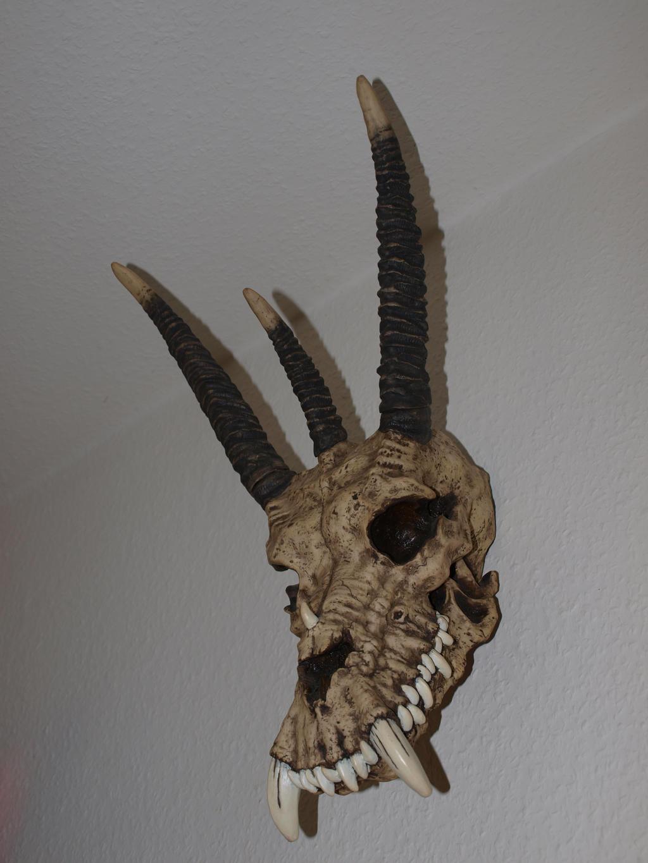 Skull Stock 13 by PsykoHilly