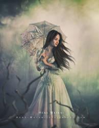 Elizabeth Book cover