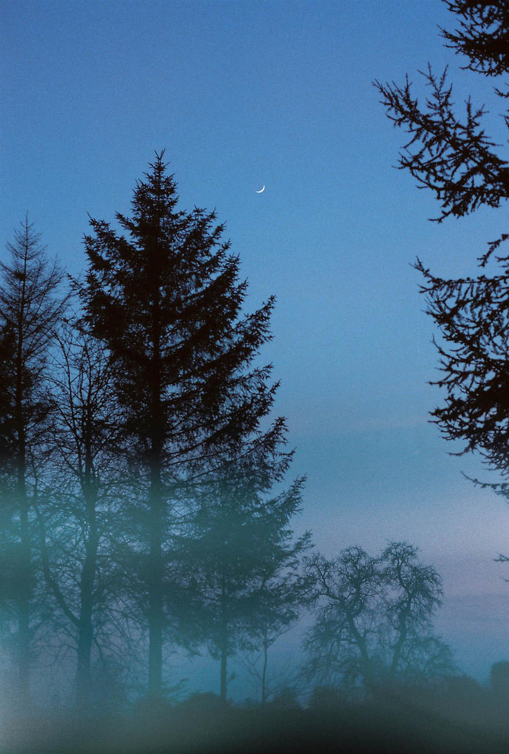 Moon at Dusk by Andy-Floch