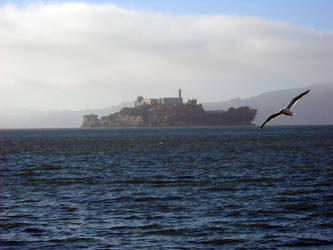 Alcatraz Island by erikajayne