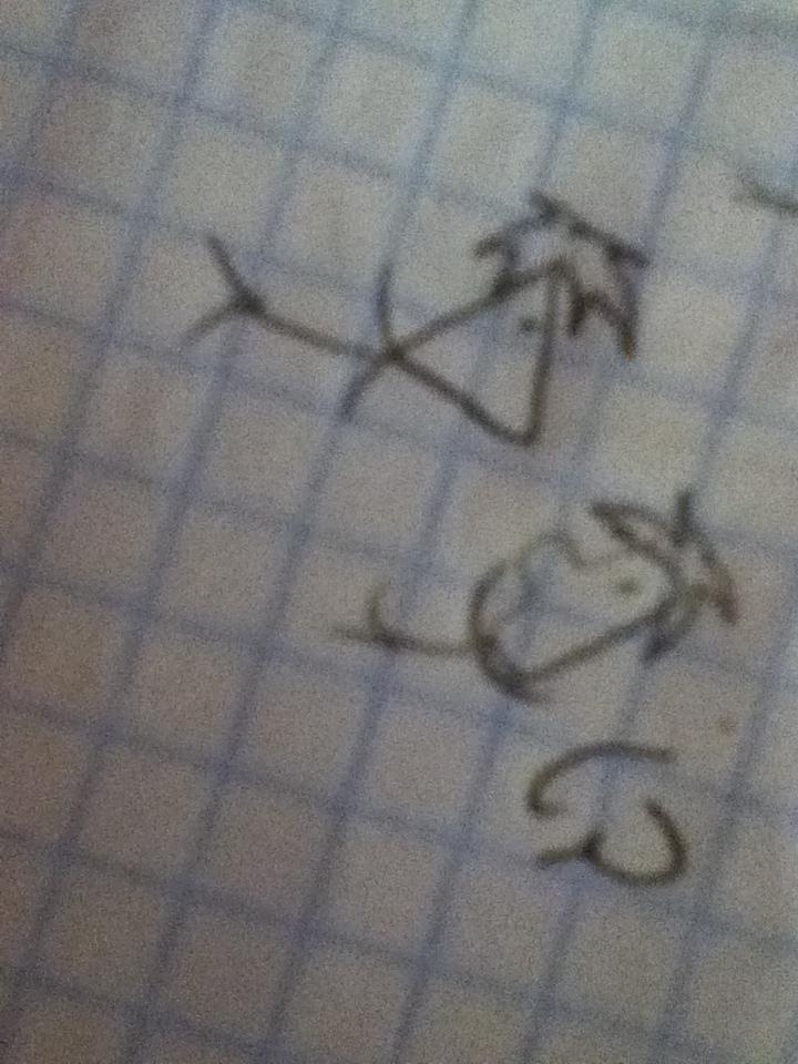 .:Phineas y Ferb:. (????? by lauralinda