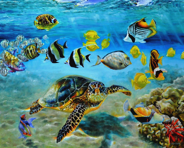 Hawaiian reef fish and sea turtle by veracauwenberghs for Hawaii reef fish