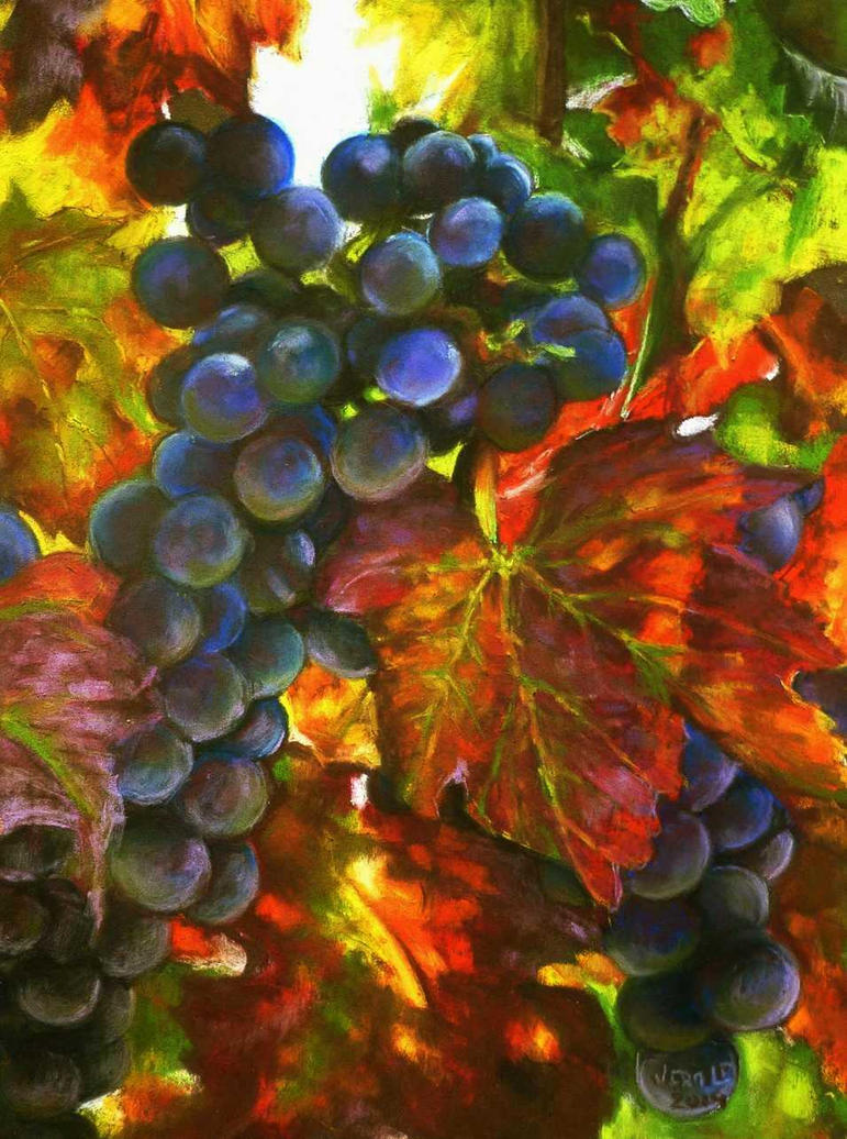 Autumn vine by veracauwenberghs