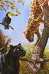 Jaguars and toucan