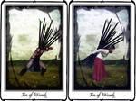 Tarot-Ten of Wands