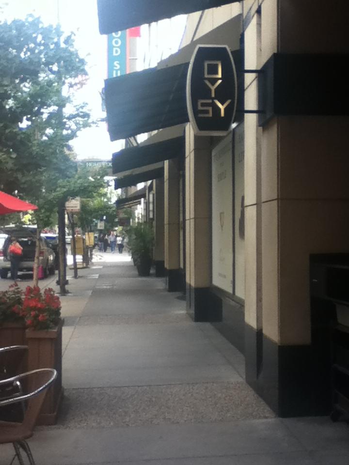 Oy Sy - Chicago, IL by Artistic-Resonance