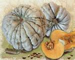 Grey pumpkin by LasmejaLora