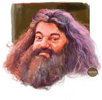 Hagrid fan art