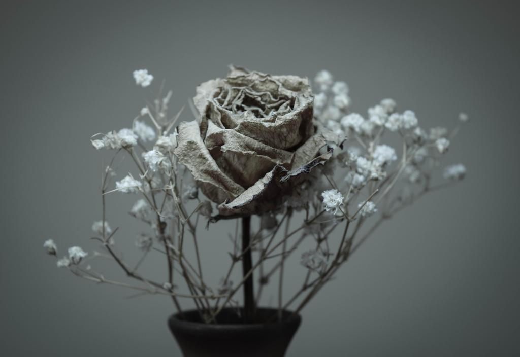 Dead flowers 2 by ju1iu5 on DeviantArt