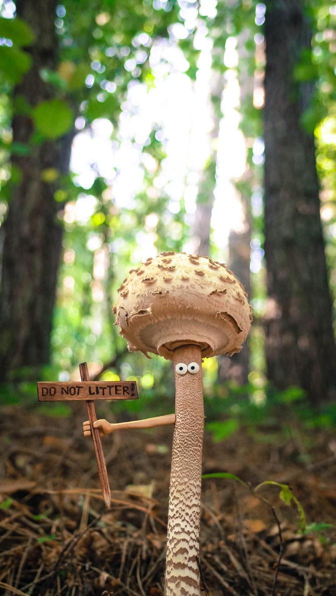 Mushroom 02 EN by ju1iu5