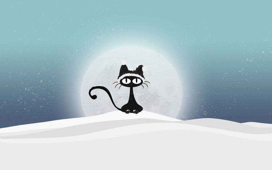 Sneeuw Puss