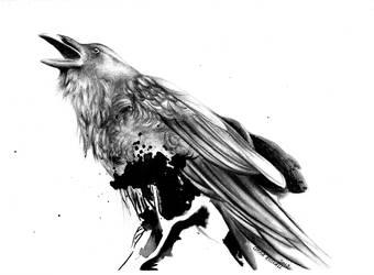 Raven by DarthHoney