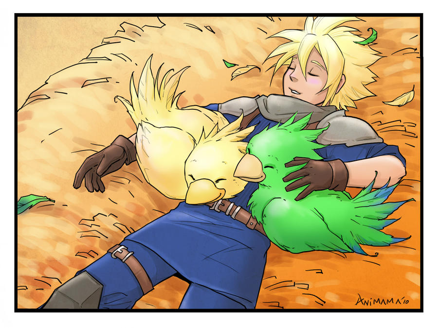 Cloud and chocobos