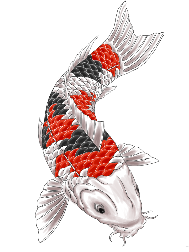 Image gallery japanese koi tattoo designs for Koi fish meaning