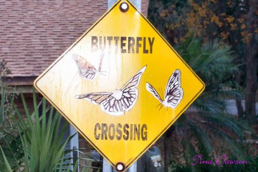 Butterfly Crossing.
