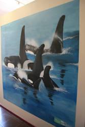 Whale wall by stephannie-moran