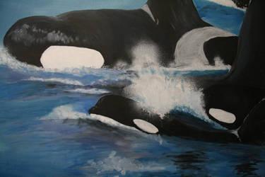 Whale wall2 by stephannie-moran