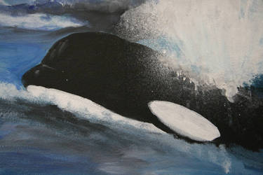 Whale wall3 by stephannie-moran