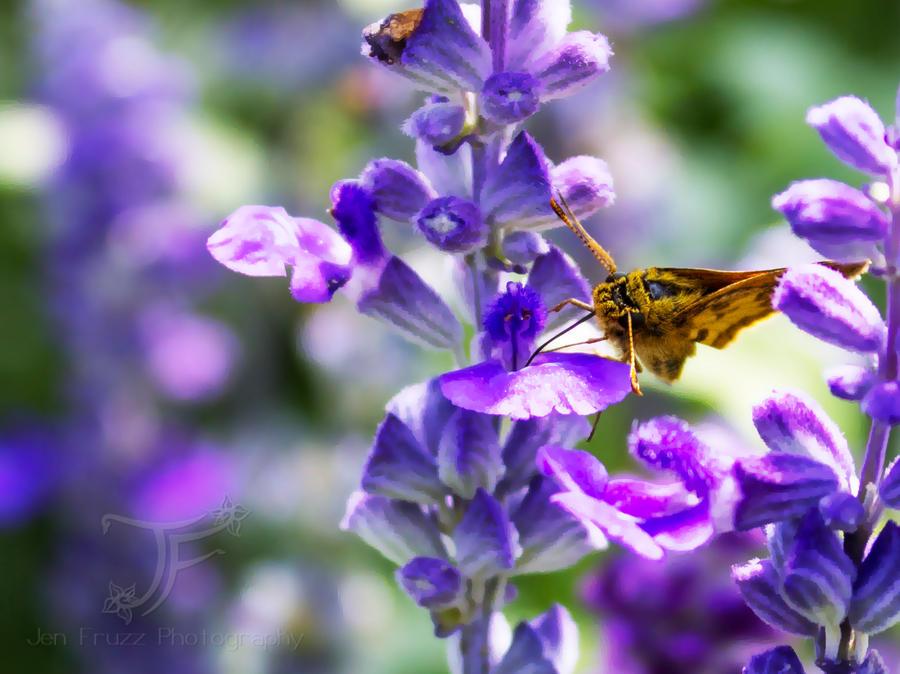 Bug's Life by JenFruzz
