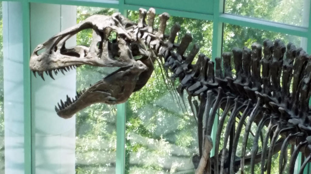 Acrocanthosaurus is ready for its closeup by timbox129