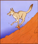 Coyote Just Wants to Play